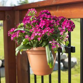 Add the flowers and pot of your choosing to the Complete Pot Bundle by Hold It Mate for a gorgeous, blooming view.