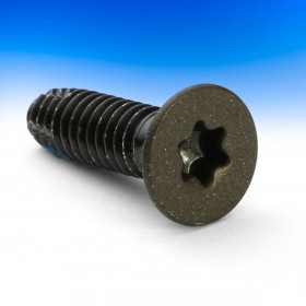 T25 Thread Cutting Replacement Screw by Fortress Iron - Antique Bronze