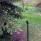 Princess LED Landscape Spot Light in Antique Metal Black by Dekor