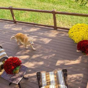 Beautiful and scratch-resistant, Genovations PVC deck boards create a gorgeous outdoor space for your family and pets.