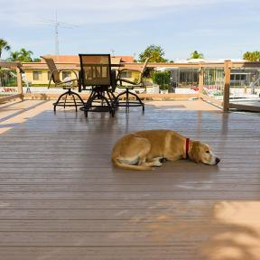 Lounge the day away with Genovations PVC decking the coolest board surface temperature available today.