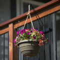 Let Halloween decorations or dangling flower baskets fly for your fall decoration ideas of 2019