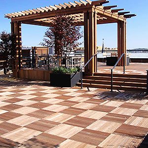 Bison Deck Supports and Wood Tiles